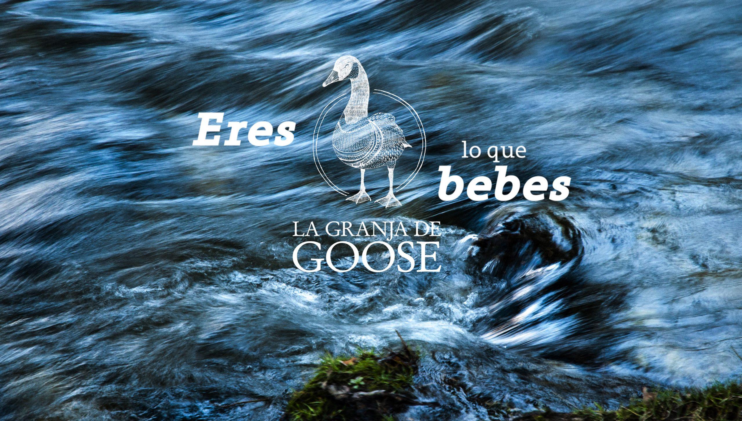 https://www.lagranjadegoose.com/blog/wp-content/uploads/2020/08/Eres-lo-que-Bebes-La-Granja-de-Goose-1-scaled.jpg